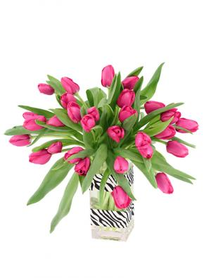 Hot Pink Passion Tulip Arrangement in Mexia, TX | BLOSSOM'S FLORIST & GARDEN CENTER
