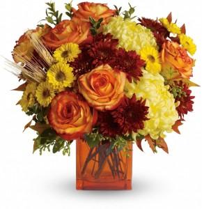 Flirty Autumn $45.95, $55.95, 65.95