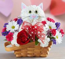 Flirty Feline™ Arrangement