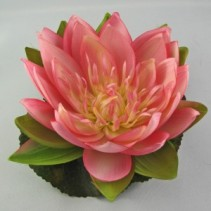 Floating Water Lilly Wedding Accessories