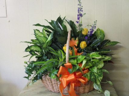 Floor Planter Basket With Large Plants And Vase Of Flowers In
