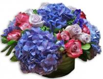 Floral Jewel tones Cut flowers