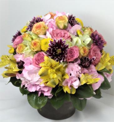Floral Medley  Pot Arrangement