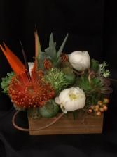 floral succulents