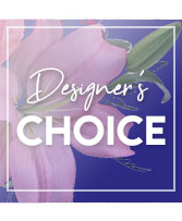 Send Beauty Designer's Choice