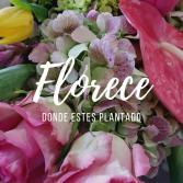 Florece donde estes plantado Mother's Day
