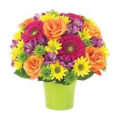 Brilliance Bouquet BF123-11KM