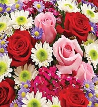 Florist Choice The Very Best Flowers of the Day!