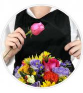 Florist Choice Daily Deal