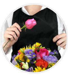 Florist Choice Daily Deal  in Stafford, VA | Peg's Florist