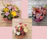 Florist Designer In  a  Chic Box