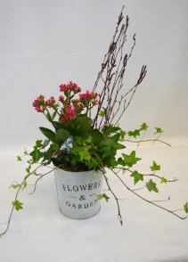 Flower and Garden  blooming planter