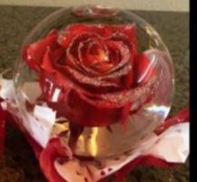 Fresh Rose last up 6-8 months Rose