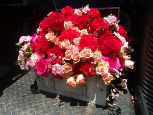 Flower Box Trunk Mixed flowers in Canton, GA | Canton Florist