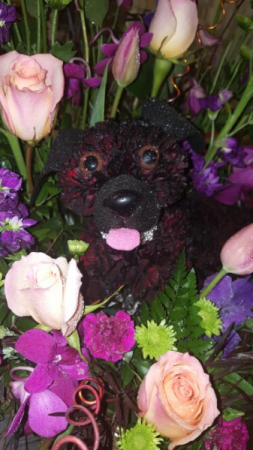 Flower Puppy Any Occasion