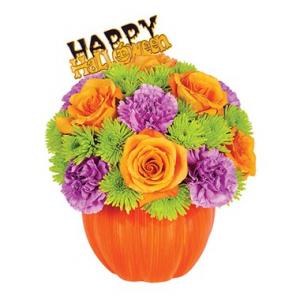 Flowering Pumpkin Arrangement in Croton On Hudson, NY | Cooke's Little Shoppe Of Flowers