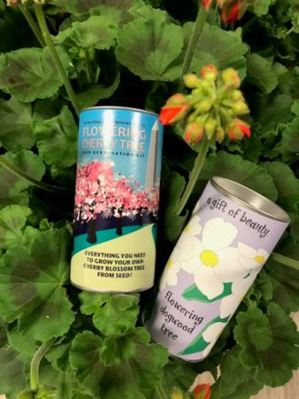 Flowering Tree 2 Seed Kits