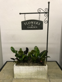 Flowers and Garden Planter Box Green Plants
