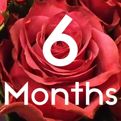 FLOWERS FOR 6 MONTHS Subscription Service