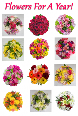 FLOWERS FOR A YEAR! WEEKLY,MONTHLY, PICK YOUR DATES in Saskatoon, SK | QUINN & KIM'S FLOWERS