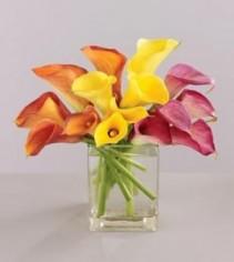 Flowers For A Year Premium Fresh Arrangement