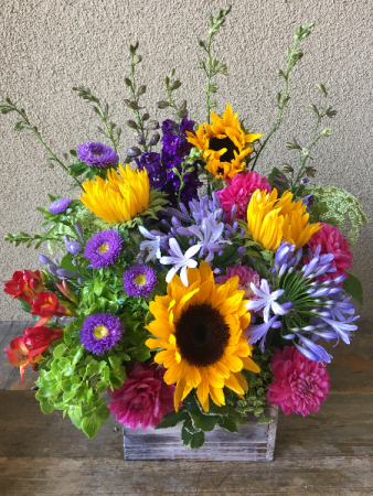 Flowers in a Box Seasonal Mix of Your Choice