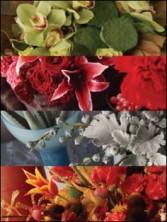 FLOWERS IN LAS VEGAS Designer's choice flower arrangment.