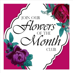 Flowers of the Month Club Seasonal Fresh Flowers Delivered Every Month in Milwaukie, OR | Mary Jean's Flowers by Poppies & Paisley