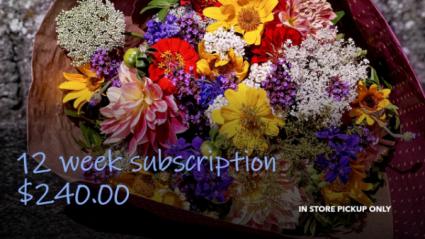 FLOWERS OF THE WEEK CLUB: 12 WEEKS IN STORE PICKUP ONLY