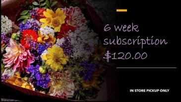 FLOWERS OF THE WEEK CLUB: 6 WEEKS IN STORE PICKUP ONLY