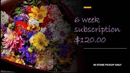 FLOWERS OF THE WEEK CLUB: 6 WEEKS IN STORE PICKUP ONLY