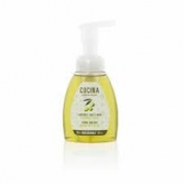 Foaming Hand Wash  Fruits & Passions 250ml