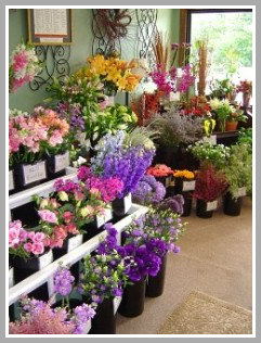 Follow us on Facebook!  in Centerville, MA | ENCHANTED FLORIST