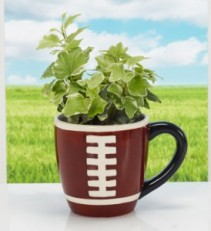 Football Coffee Mug Gifts
