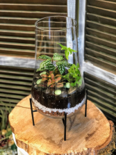 Footed Apothecary Terrarium