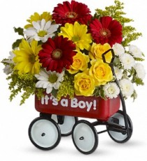 For a girl or boy!  Baby Wagon