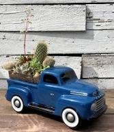Ford F1 Pickup Succulent Garden