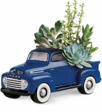 Ford Truck Succulent Garden