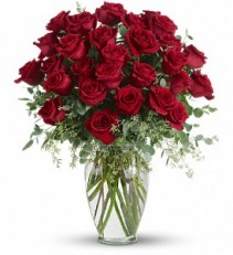 Forever Beloved - 30 Lg Stem Roses  T255-4 Rose Arrangement