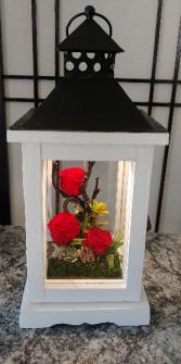 Forever Lantern Rose Amor