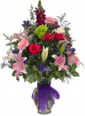 Beautiful Dreamer LOCAL DELIVERY ONLY