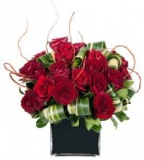 Forever My Dear Valentine Dozen