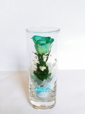 Forever Roses #SCblue Forever Roses arranged in sealed glass