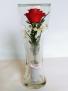 Forever Roses #CHRED Forever Roses arranged in sealed glass