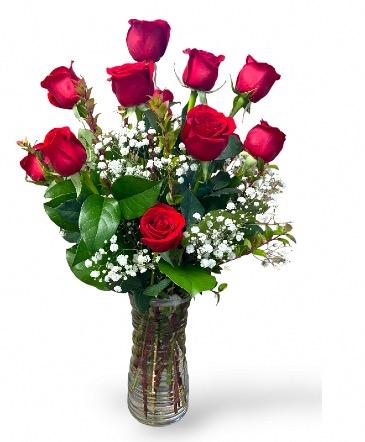 You're Always On My Mind One Dozen Long Stems Ecuadorian  Roses