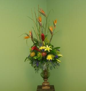 FORMAL TROPICAL DESIGN Tropical Flower Arrangment in Galveston, TX | J. MAISEL'S MAINLAND FLORAL