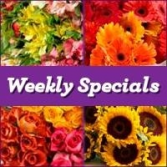 Fort Worth Florist Weekly Flower Specials
