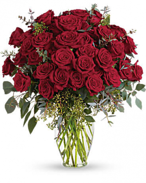 Forver Beloved Red Roses in Miami, FL | FLOWERTOPIA