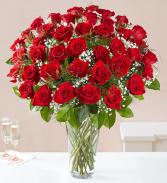 FOUR DOZEN RED ROSES