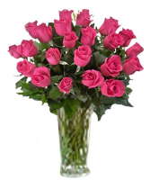 Hot Pink Roses One dozen, two dozen or 3 dozen